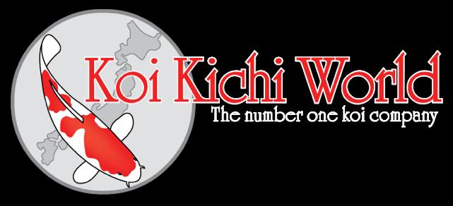 Koi Kichi World
