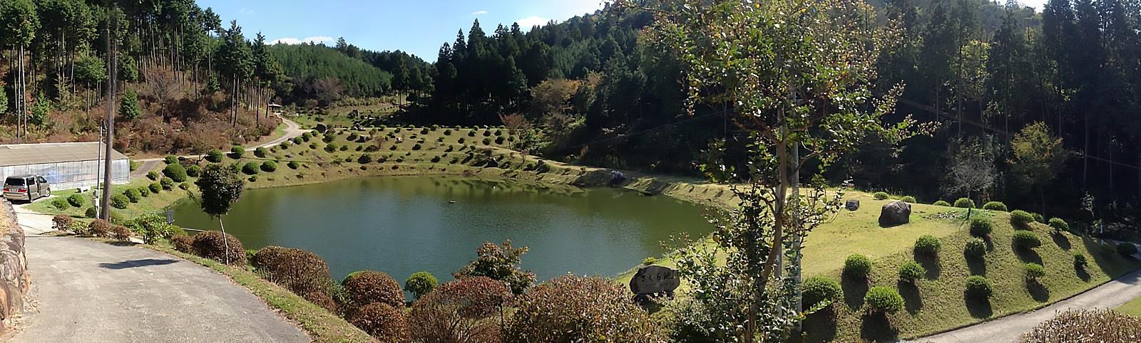 koi-japan-reis